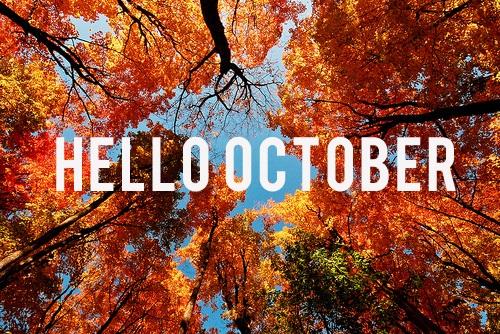 Edito du mois d'octobre – A livre ouvert