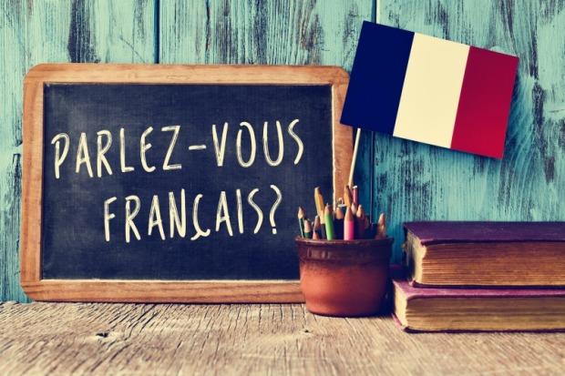 Le Francais Cette Langue Qui Voyage 2 A Livre Ouvert
