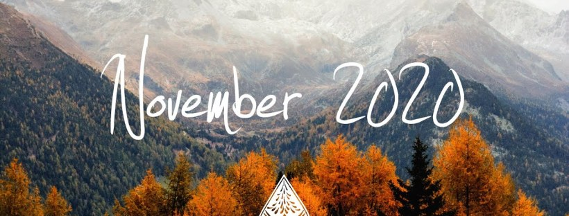 alivreouvert.net novembre 2020