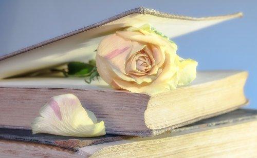 rose-2101475_1280 (1)